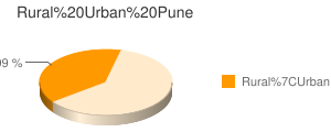 Pune census population